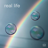 Real Life by Kongos