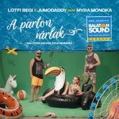A Parton Várlak (Balaton Sound Himnusz / 2018) by Lotfi Begi