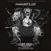 Precision - The EP by Faded Mulah