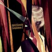 ANALOGmusiq Compilation 2 von Various Artists
