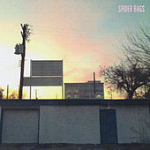My Heart Is a Flame in Reverse by Spider Bags
