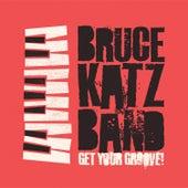 Get Your Groove de Bruce Katz Band