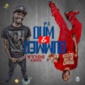 Dum & Dummer by P3