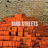 Direction by Bird Streets