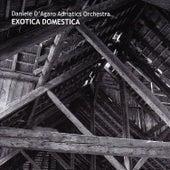 Exotica Domestica by D.D'Agaro Adriatics Orchestra