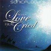 When Love First Cried von Sonicflood
