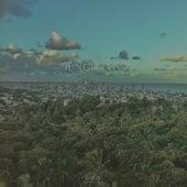 Junglelov by Pay
