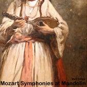 Mozart Symphonies at Mandolin by Mark Delisle