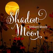 Shadow Moon - Ambient Moods by Various Artists