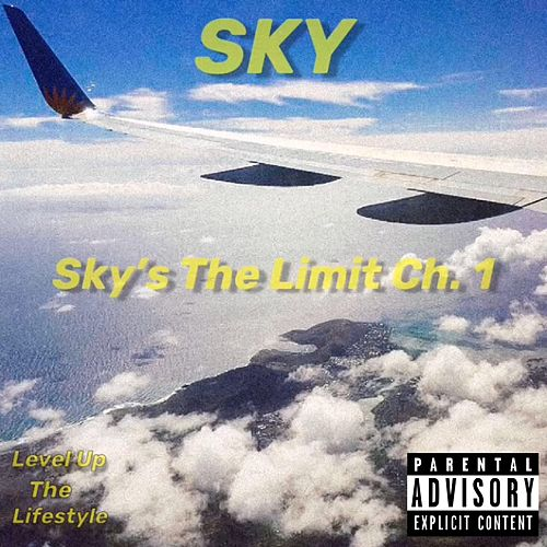 Sky's the Limit Chapter 1 by Sky