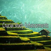 Crucial Study Enhancements by Classical Study Music (1)