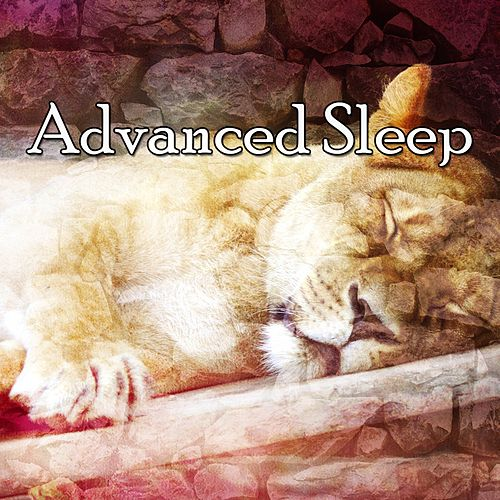 Advanced Sleep by Baby Sleep Sleep