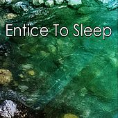 Entice To Sleep de White Noise Babies