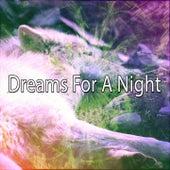 Dreams For A Night de Sleepicious