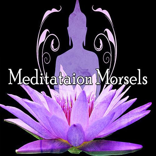 Meditataion Morsels by Music For Meditation