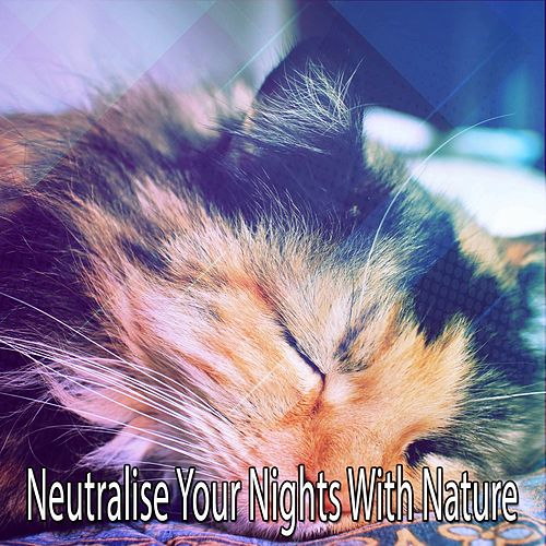 Neutralise Your Nights With Nature by Nature Sound Series