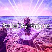 Relief By Nature de Nature Sounds Artists