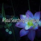 A Soul Searching Adventure de Musica Relajante