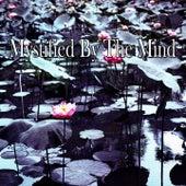 Mystified By The Mind de Meditación Música Ambiente