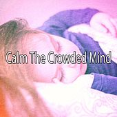 Calm The Crowded Mind de Water Sound Natural White Noise