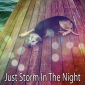 Just Storm In The Night de Thunderstorm Sleep