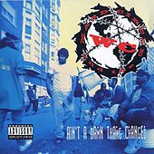 Ain't A Damn Thang Changed by WC & The Maad Circle