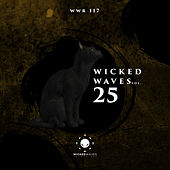 Wicked Waves, Vol. 25 - EP de Various Artists