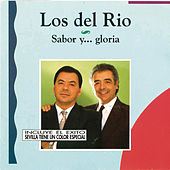 Sabor y .. Gloria von Los del Rio