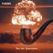 Days After Tomorrowland di Yukno