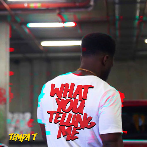 What you telling me by Tempa T