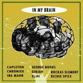 In My Brain de Various Artists