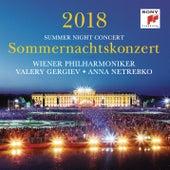 Sommernachtskonzert 2018 / Summer Night Concert 2018 von Valery Gergiev