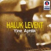 Yine ayrılık by Haluk Levent