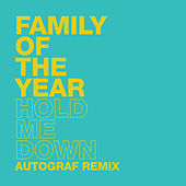 Hold Me Down (Autograf Remix) von Family of the Year