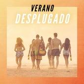 Verano desplugado by Various Artists