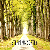 Stepping Softly by Nature Sounds (1)