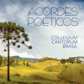 Acordes Poéticos van Collegium Cantorum Brasil