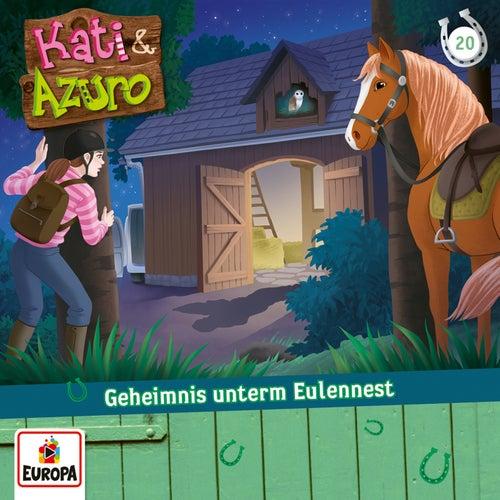 020/Geheimnis unterm Eulennest von Kati & Azuro