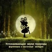 Успокаивающие звуки природы (фортепиано и восточные  мелодии для глубокого сна) by Various Artists