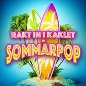 Rakt in i kaklet - Sommarpop by Various Artists