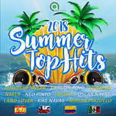 Summer Top Hits 2018 von Various Artists