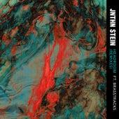 Headroom (Remixes) von Jnthn Stein