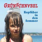 Kopfüber in den Sommer von Grünschnabel