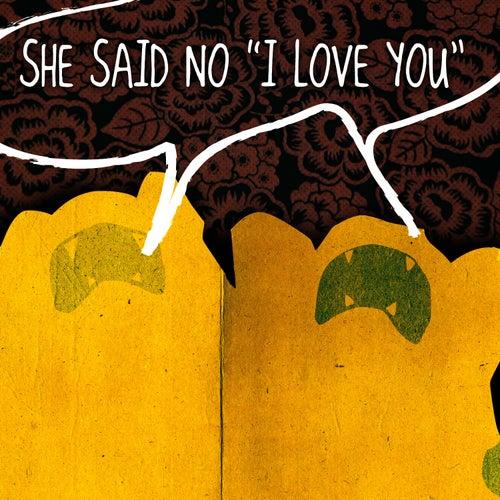 She Said No (I Love You) by TAB The Band