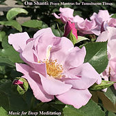 Om Shanti: Peace Mantras for Tumultuous Times by Music For Meditation