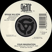 Your Imagination / Your Imagination [A Cappella] [Digital 45] by Brian Wilson