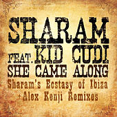 She Came Along [Remixes] by Sharam