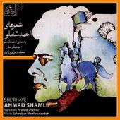 She'rhaye Ahmad Shamlu by Ahmad Shamlu