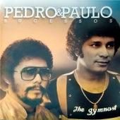 Sucessos von Pedro & Paulo