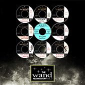The Wand Records Story Vol 2 de Various Artists